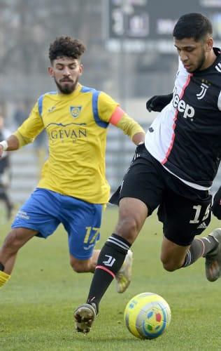 Playoff Serie C, guida alla Carrarese
